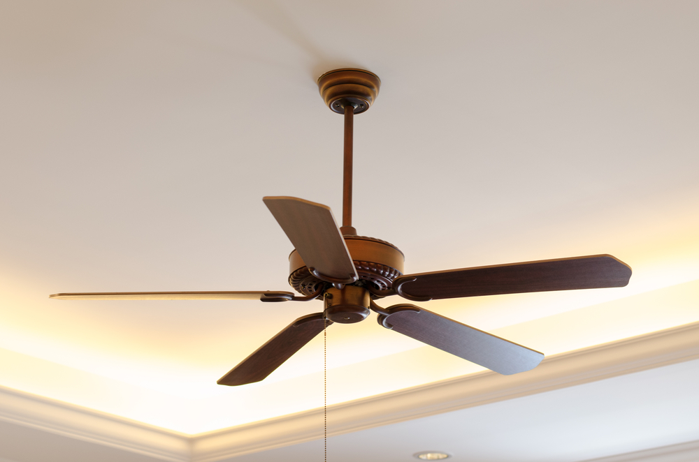 Ceiling fan repairs and installations if you do a regular check up of your ceiling fan or you go the extra mile of hiring a capable electrician to maintain this vital appliance of yours aloadofball Choice Image